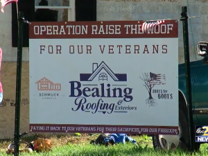 roof for a vet